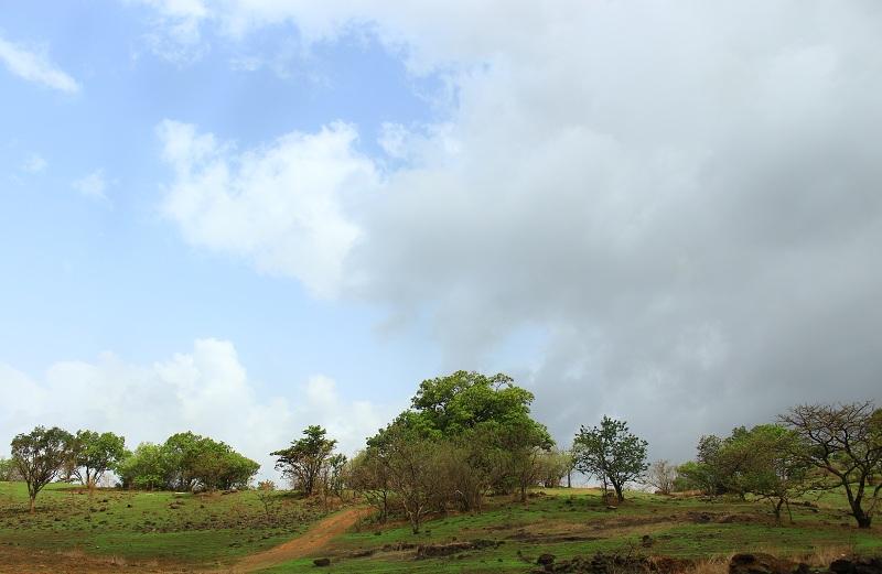 rajmachi walking path 2