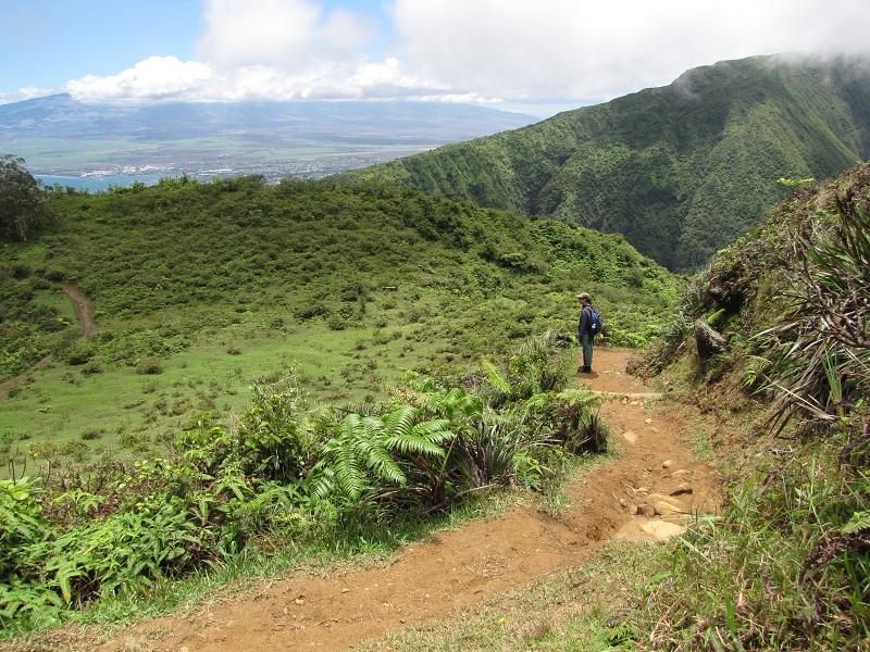 Waihee ridge trail route
